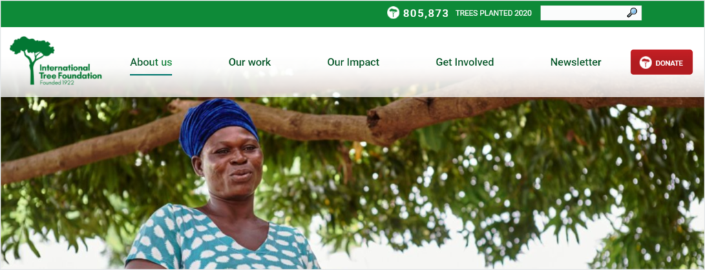 Donate button with charity logo on the International Tree Foundation's website