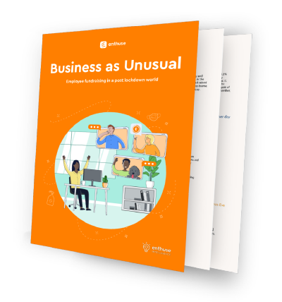 Business as Unusual corporate fundraising report